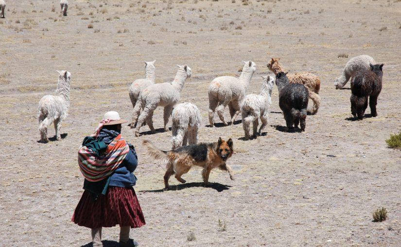 Peru Vortrag